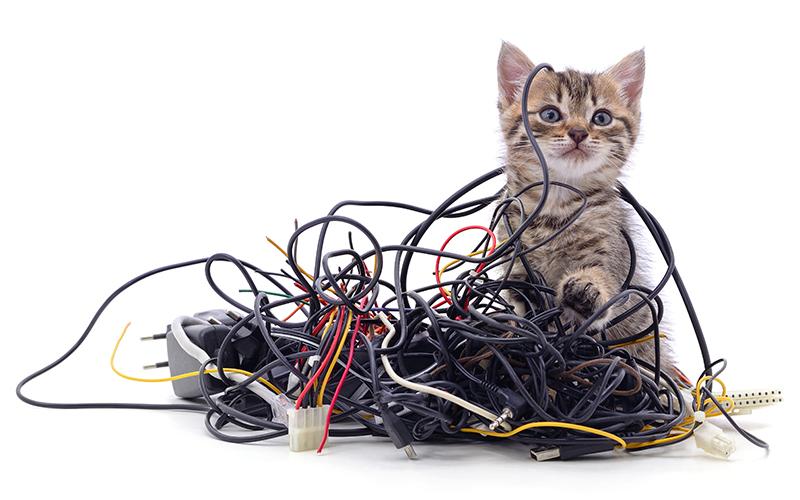 Cat5 vs Cat5e vs Cat6 Ethernet Cable
