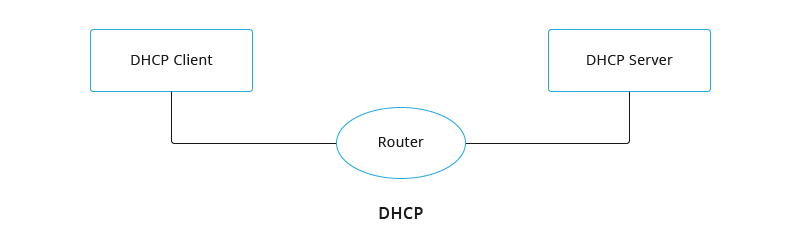 DHCP networking