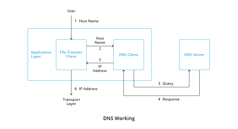 DNS networking