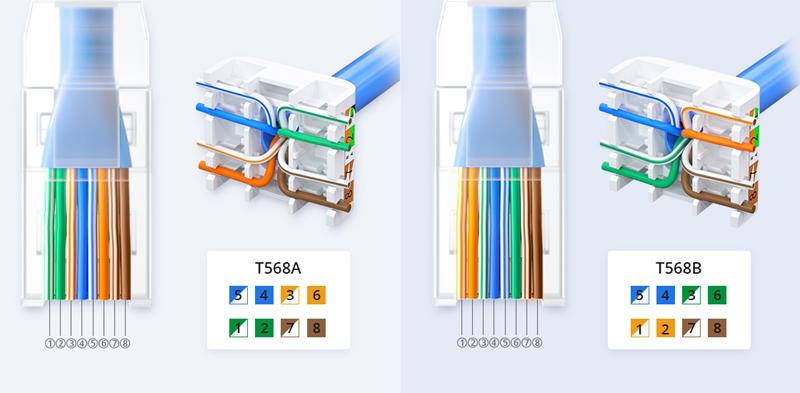 T568A vs T568B