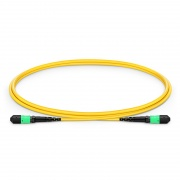 Cable troncal MTP®-MTP® OM4 50/125