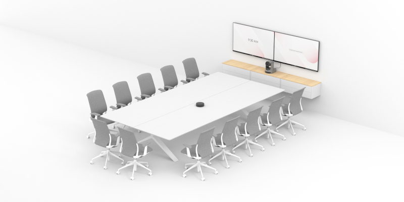 Large Meeting Rooms for Video Conferencing