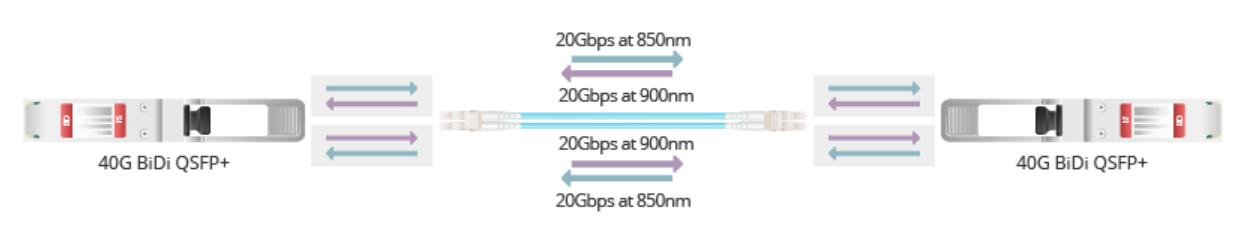 40G module.png