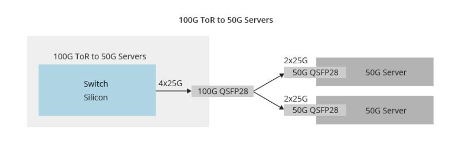 100 switch to 50G server.png