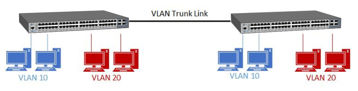 switch trunking